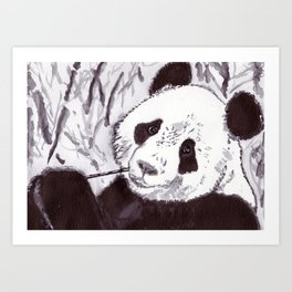 Panda - Animal Series in Ink Art Print