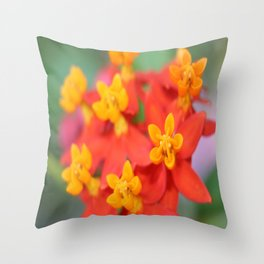 Succulent Red and Yellow Flower III Throw Pillow