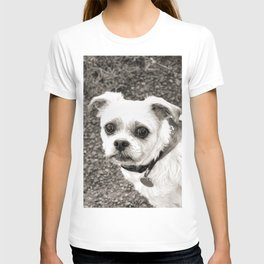 Molly black and white T-shirt