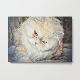 Love Cat Metal Print