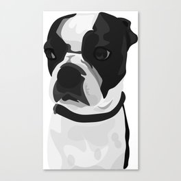 Tucker the Boston Terrier Canvas Print