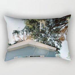 Road Runner Rectangular Pillow