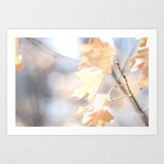 Abstract Oak Leaves Art Print