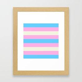 Transgender Pride Flag v2 Framed Art Print