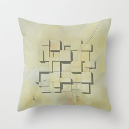 Dynasty Dream Throw Pillow