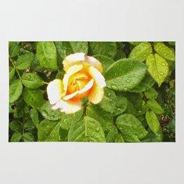 Floral Print 042 Rug
