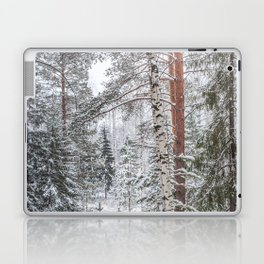 Winter in the Mountains Laptop & iPad Skin
