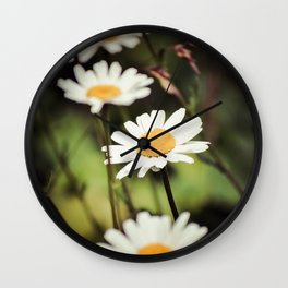 Daisies in the Garden Wall Clock