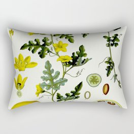 Citrulus - Vintage Illustration Rectangular Pillow