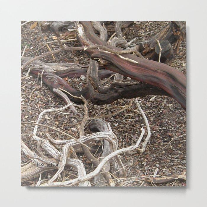 TEXTURES - Manzanita in Drought Conditions #3 Metal Print
