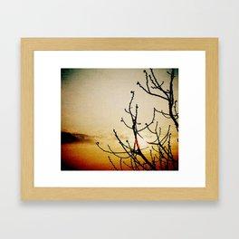 Dawn #2 Framed Art Print