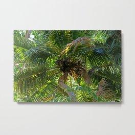 Nature's Umbrella Metal Print