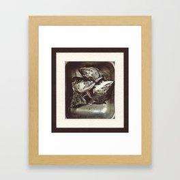 Salmon Heads Framed Art Print