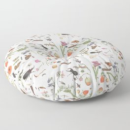 Common place miracles -Natural History Part V Floor Pillow