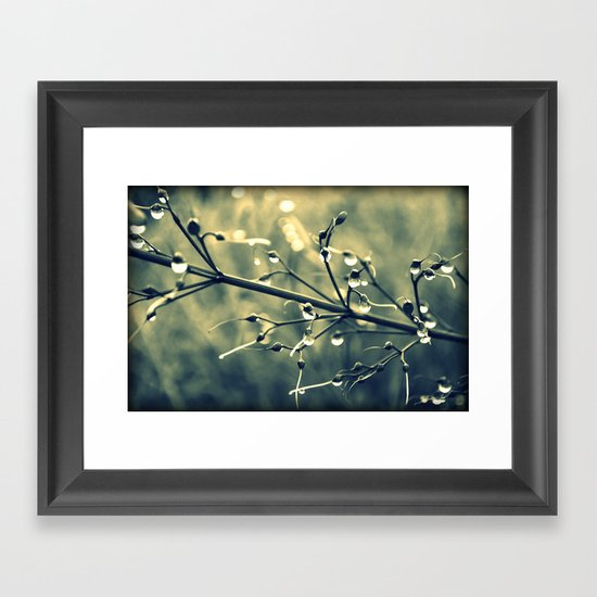 morning drops Framed Art Print