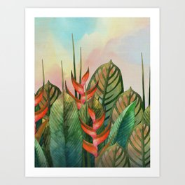 Red Heliconia Flowers Art Print