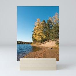 Rivershore in autumn Mini Art Print