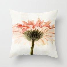 Gerbera Turnaround Throw Pillow