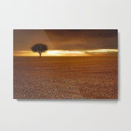 Ancient Oak Amid Ploughed Crop Field Italian sunset Metal Print