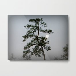 Morning Moon Shine Metal Print