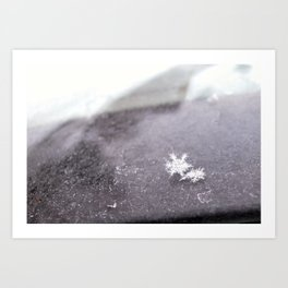 perfect snowflakes Art Print