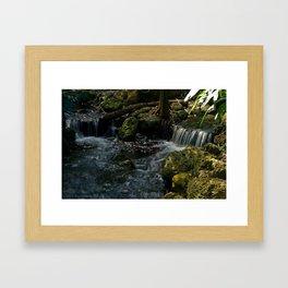 Serenity in the Garden Framed Art Print