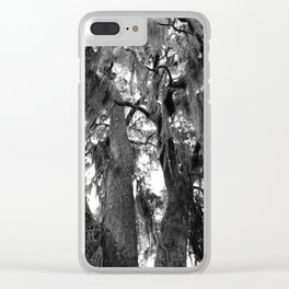 Spanish Moss Tree, Black and White Photo Clear iPhone Case