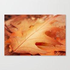 AFE Autumn Leaves Canvas Print