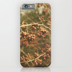 Branch iPhone 6s Slim Case