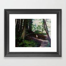 Redwood Forest Study Framed Art Print