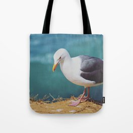 Gazing Gull Tote Bag