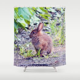 Easter Bunny perhaps Shower Curtain