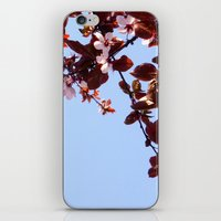 cherry blossom iPhone & iPod Skins featuring Cherry Blossom by madbiffymorghulis