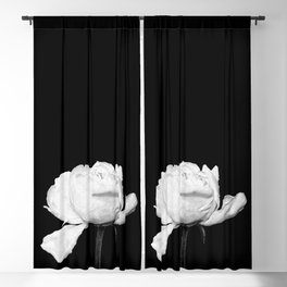 White Peony Black Background Blackout Curtain