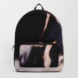 Goat Sass Backpack