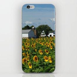 Sunflower Farm  - Pope Farm Conservancy, Wisconsin iPhone Skin
