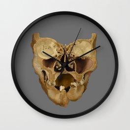 Coronal Section Wall Clock