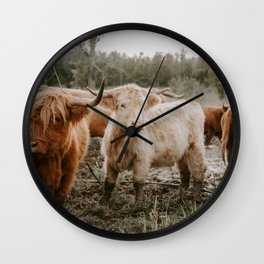 Curious Highland Cows Wall Clock