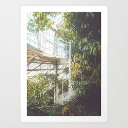 Greenhouse 2 Art Print