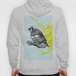 Sparrow me Hoody