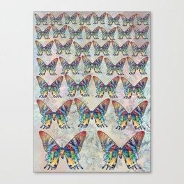 butterfly in the sky Canvas Print