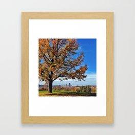 autumn in the burgh  Framed Art Print