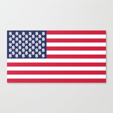 usa dollar flag Canvas Print
