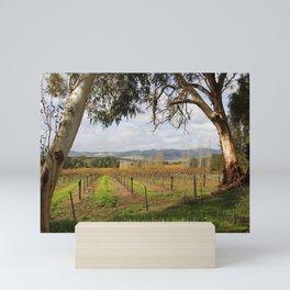 Barossa Valley Autumn Mini Art Print