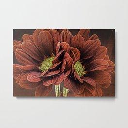 Red Chrysanthemum Duo Metal Print