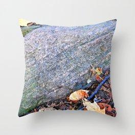 Striated Stone Throw Pillow
