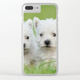 Two West highland white terrier puppies portrait Clear iPhone Case