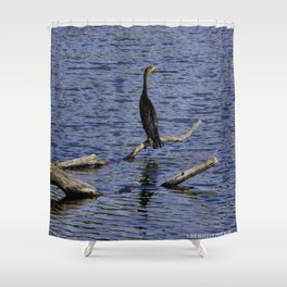 Chicago Coromorant (Chicago North Pond Collection) Shower Curtain