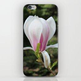 Magnolia Flower iPhone Skin