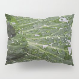 Nature's green and diamonds (2nd in the Cabbage collection) Pillow Sham